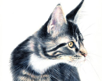 illustration - original illustration - cat  - custom pet portrait  - A3 - 11 x 17 inch