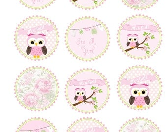 Edible wafer paper Baby Girl, Owl, cookie toppers