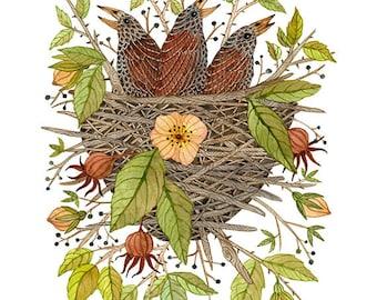 Nestlings in Rose Bramble Print, baby birds, birds nest, bird art, giclee print, nursery art, childrens art, illustration