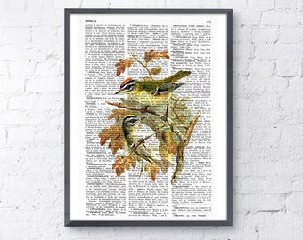 Summer Sale Birds in love print on Book page  Mixed media  art dictionary page printed ANI049