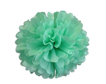MINT Tissue Paper Pom Pom