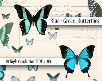 Butterflies Blue and Green Digital Collage Sheet Wings Instant Download Mixed Media Altered Art Images dcs66