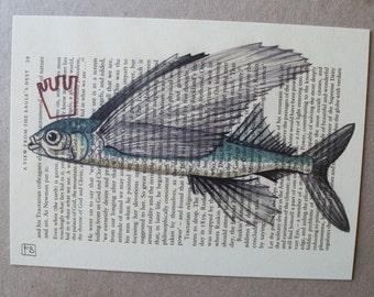 Flying Fish_Print