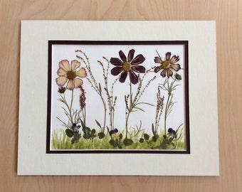"""Original Pressed Flower Artwork - """"Cosmos Garden"""""""