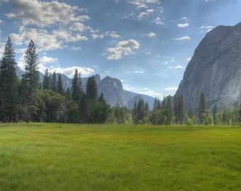 Shadow of Yosemite Falls, Grassland, Yosemite National Park, Pine tree, Fog, Tree, Grass, Mountain,  Yosemite Falls