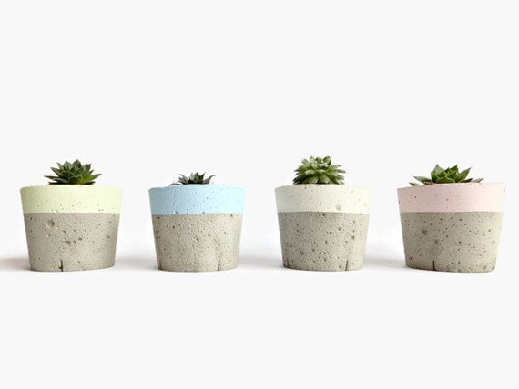 Mini Concrete Planters : Set of pastel concrete mini planters small round by