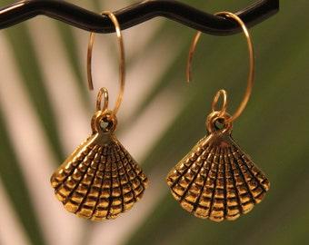 Brass Seashell #1520