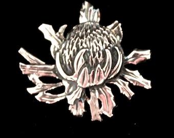 Waratah Brooch sterling silver