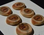 6 Handmade Cedar Tree Branch Wood Buttons 1 Inch Round