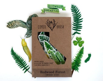 California Redwood Forest Temporary Tattoos: Owl, Redwood, Sorrel, Fern, Ribbon
