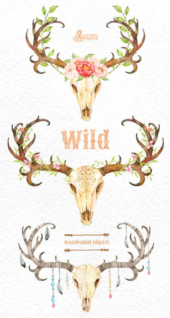 Wild 3 Watercolor Skulls With Antlers Hand Painted