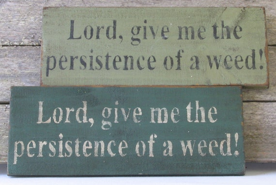 Persistence of a Weed Wooden Sign