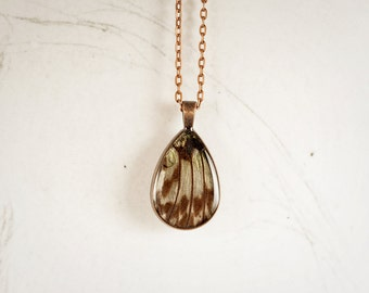Real Butterfly Necklace - Real Butterfly Jewelry - Rice Paper Butterfly - Butterfly Wing Jewelry - Tear Drop Pendant