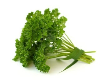 PARSLEY (Gigante Italian) VEGETABLE Herb *25 Seeds* Fresh and High Quality, Veggie Garden & High Germination