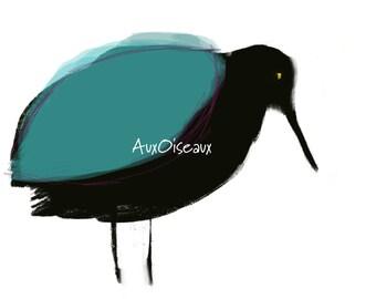 Oiseau noir, turquoise, dessin numérique original, impression de qualité, type giclée. Cadre non-inclus.