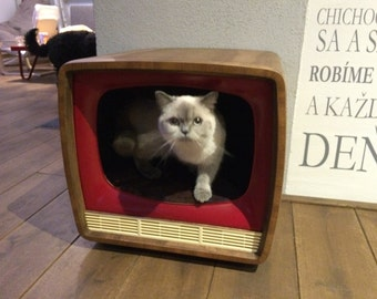 Ametyst old TV pet home
