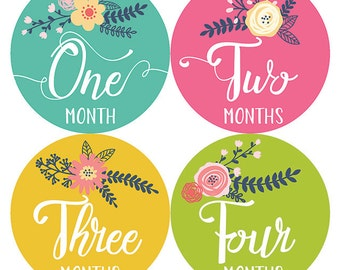 Monthly Baby Sticker Girl, Baby Month Sticker, Floral, Milestone Sticker, Month by Month Baby Sticker, Baby Gift, Baby Girl, Petite Folio