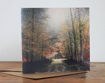 Secret Paths - Fine Art card - Trees - Woodland