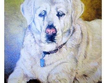 Custom Pet Portrait, Oil Painting, Pet Portrait, Handpainted, Wall Art, Pet Art, Canvas