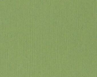 Bazzill Cardstock - 12x12 - Monochromatic - Green's