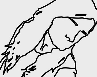 digital outline of any image