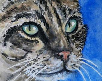 Wonderous Cat Art Original Watercolor Pet Animal Painting by Artist Debra Alouise