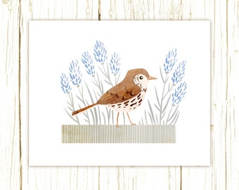 Wood Thrush Print -- bird art -- bird art 52 birds stephanie fizer coleman illustration blue brown