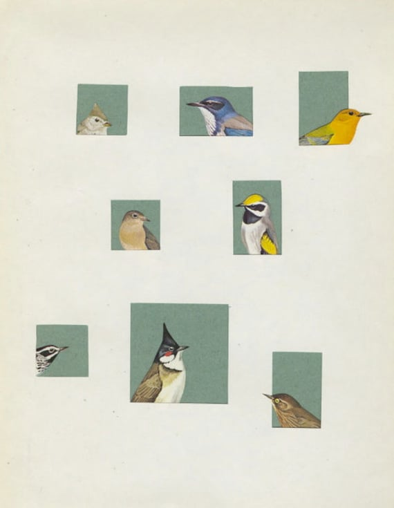 Peep Show.   Limited edition print of an original collage by Vivienne Strauss.