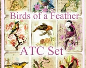 Birds of a Feather ATC Set Vintage Botanical Distressed Roses Backgrounds INSTANT DOWNLOAD Digital Printable