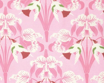 Tanya Whelan, CHLOE collection, Birds in Pink, yard