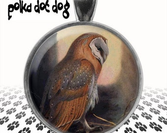 Watching and Waiting -- Barn Owl Large Glass-Covered Pendant