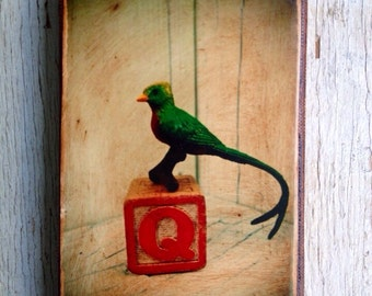 Vintage Toy  Q is for Quetzal Art/Photo - Wall Art 4x6