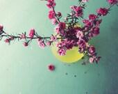 Still life photography / flower art print / aqua yellow pink floral print / retro kitchen wall art 'Spring Bouquet'