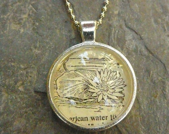 waterlily - dictionary illustration pendant necklace