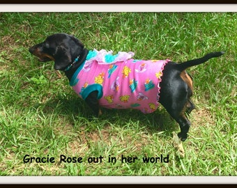 Pet Clothing Dachshund, Long Bodied Pups,  To Order Casual Dress
