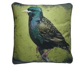 XL Cushion cover for throw pillow with bird - Starling - 24x24inch // 60x60cm