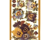Made In England Paper Lithograph Die Cut Scraps Flowers Pansy  A-173