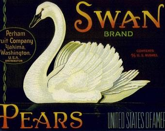 Swan Pear Fruit Crate Label
