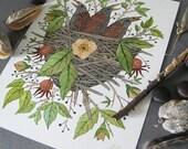 Nestlings in Rose Bramble, original watercolor painting