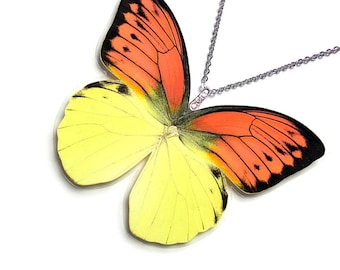 Real Butterfly Wing Necklace / Pendant (WHOLE Hebomoia Leucippe Butterfly - W017)