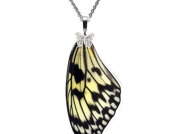 Handmade  Real Butterfly Wing Necklace (Idea leuconoe Forewing - N012)
