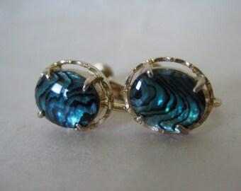 Blue Abalone Gold Earrings Screw Vintage Shell
