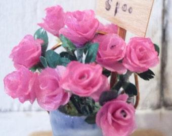 Dollhouse Roses