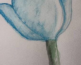 Blue Watercolor Pencil Tulip