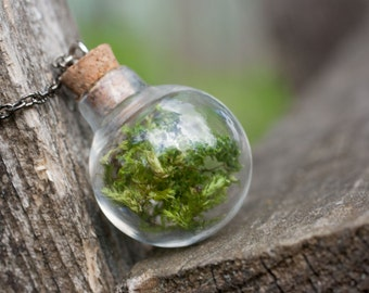Real Moss in a bottle necklace