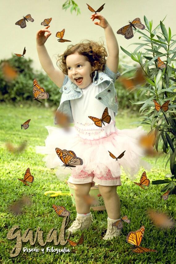 monarch butterflies photoshop overlays 42 butterfly