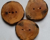 Wooden Buttons, Ash Tree Branch Wood, Set of Three, 1 7/8 Inches
