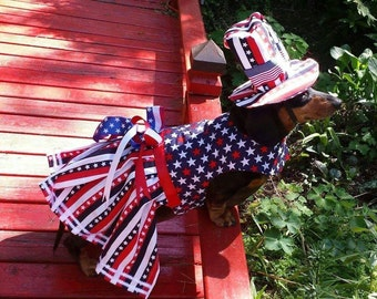 USA costume from the movie Wiener Dog Internationals As seen on New Day NW
