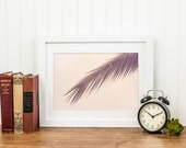 Palm - Tropical Island Summer Home Decor Photograph