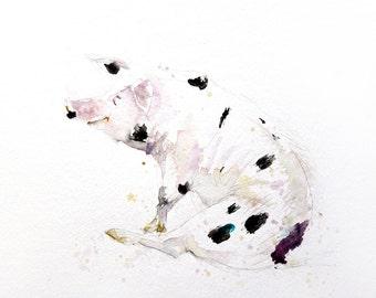 LIMITED edition print of my PIG wall art, home decor, nursery art, wildlife animal art.  hand signed, illustration, animal art